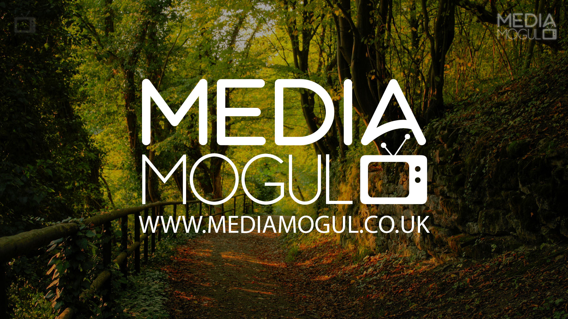 Media Mogul Backdrop 11