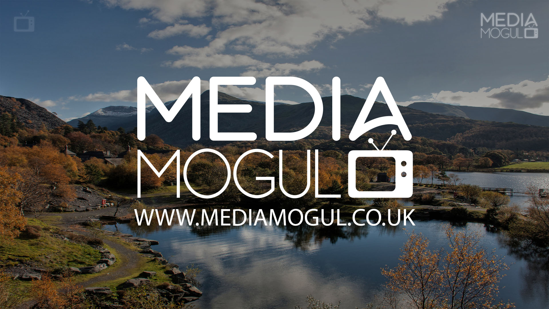 Media Mogul Backdrop 35